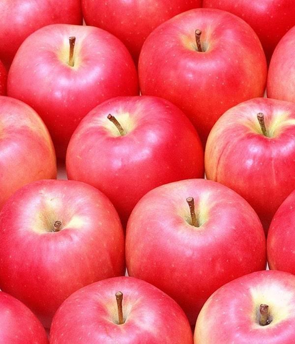 Индия затягивает с решением по украинским яблокам