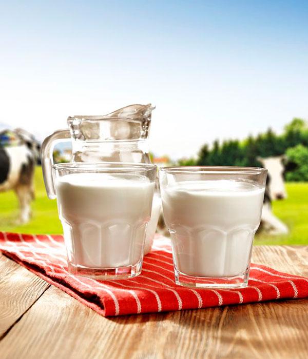 Молочная аналитика: производство и экспорт