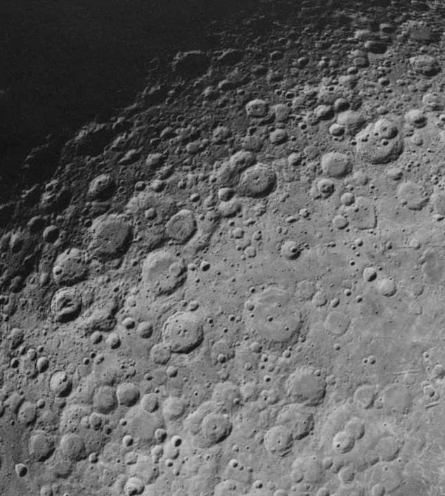 На Луне впервые вырастили хлопок (ФОТО)