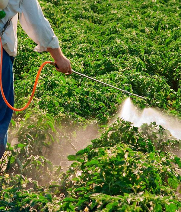 В Бразилии в моду вошли низкотоксичные пестициды