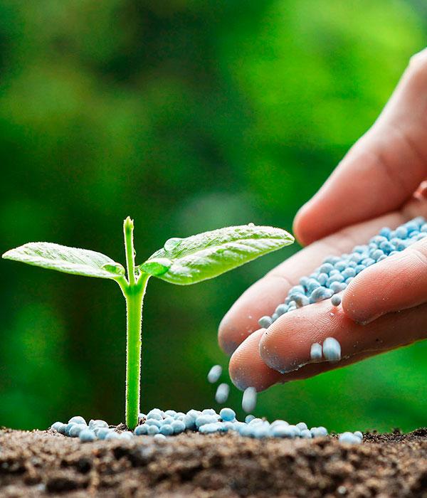 Хватит ли удобрений для весенне-летних полевых работ?