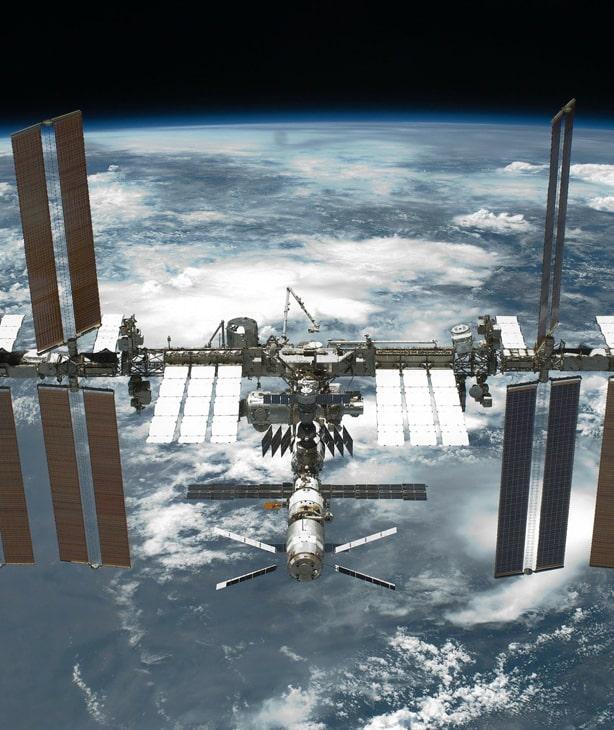 Норвегия выращивает овощи для космонавтов