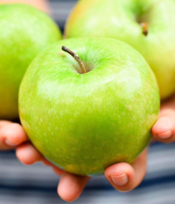 Израильские ученые нашли способ хранить яблоки целый год