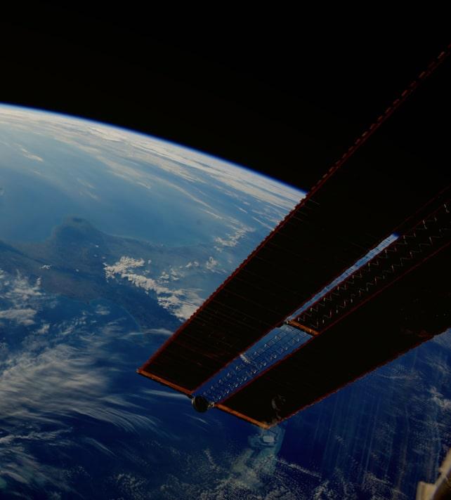 Нематод будут использовать в космосе для выращивания сельскохозяйственных культур
