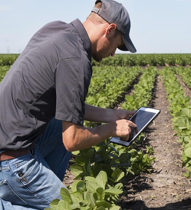 Популярные программные решения США в точном земледелии (ФОТО)