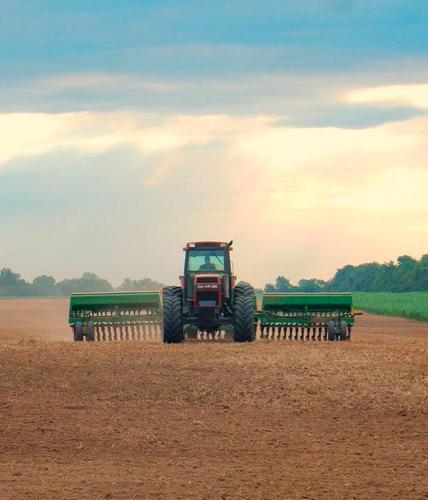 Посевная: аграрии засеяли 370 тыс. га ранних яровых зерновых и зернобобовых