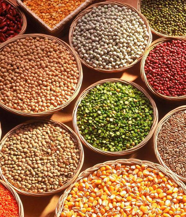 Поставки аграрной продукции в ЕС увеличились до $6,3 млрд