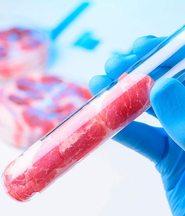Синтетическое мясо — пища будущего (ФОТО)