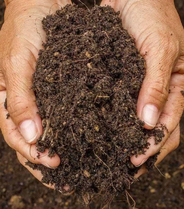 Состояние украинских почв ухудшается