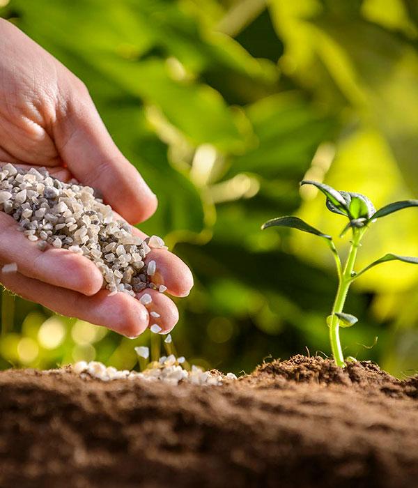 Удобрения: сколько импортировали и экспортировали