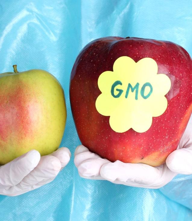 В Замбии сняли запрет на импорт ГМО продуктов