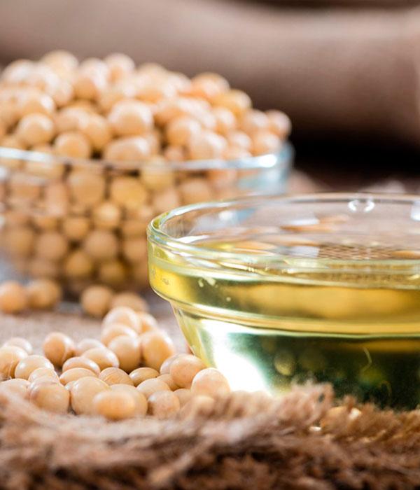 Стали известны данные по динамике экспорта масличных и продуктов их переработки