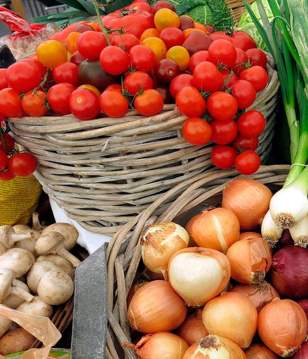 В аграрном секторе Украины наблюдается производственный рост