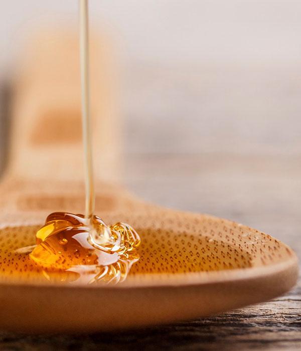 Из-за дождей пчеловоды потерпят убытки — эксперт