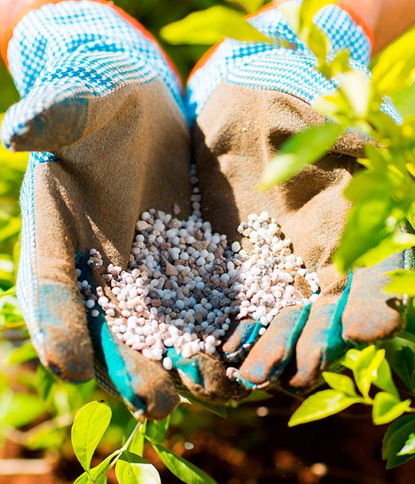Минеральные удобрения: запасы, экспорт, импорт, эмбарго