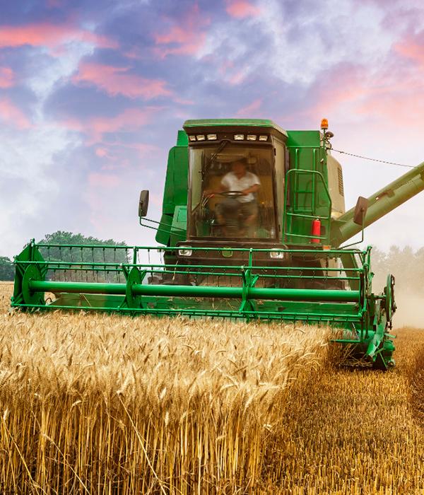 Аграрии собрали 1,6 млн тонн зерна нового урожая
