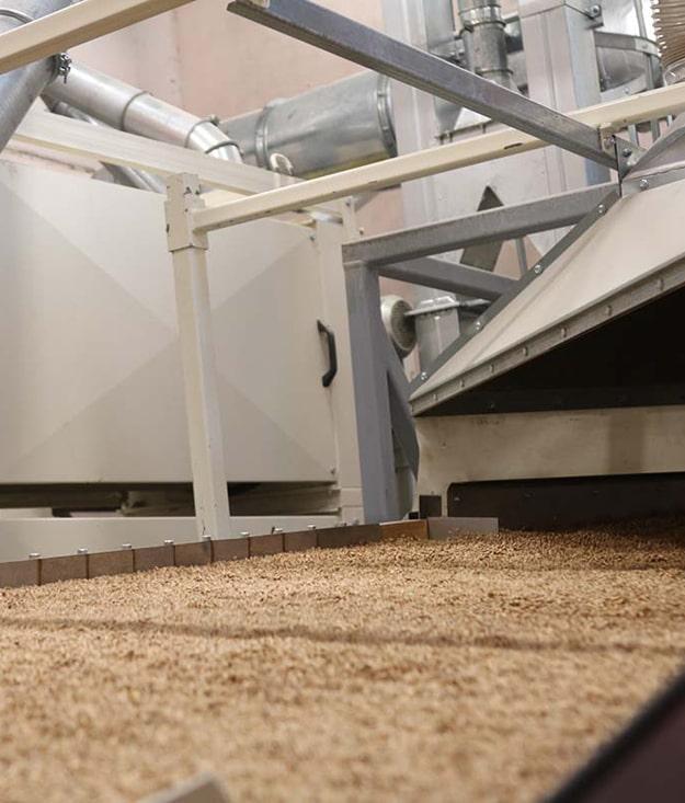 Компания «Агропродсервис» открыла вторую линию по доработке семян