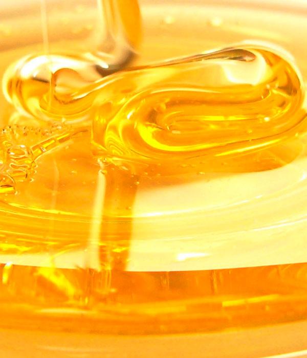 Минагрополитики утвердило новые требования к меду