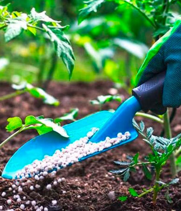 Аграрии выступили против запрета на импорт удобрений