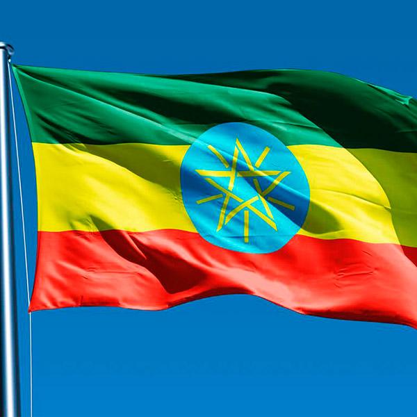 Эфиопия рассматривает Украину в качестве поставщика мяса