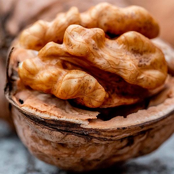 Грузия наращивает импорт грецкого ореха из Украины
