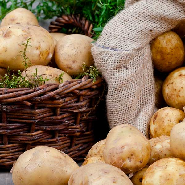 Картофель на внешнем и внутреннем рынках: появились цифры