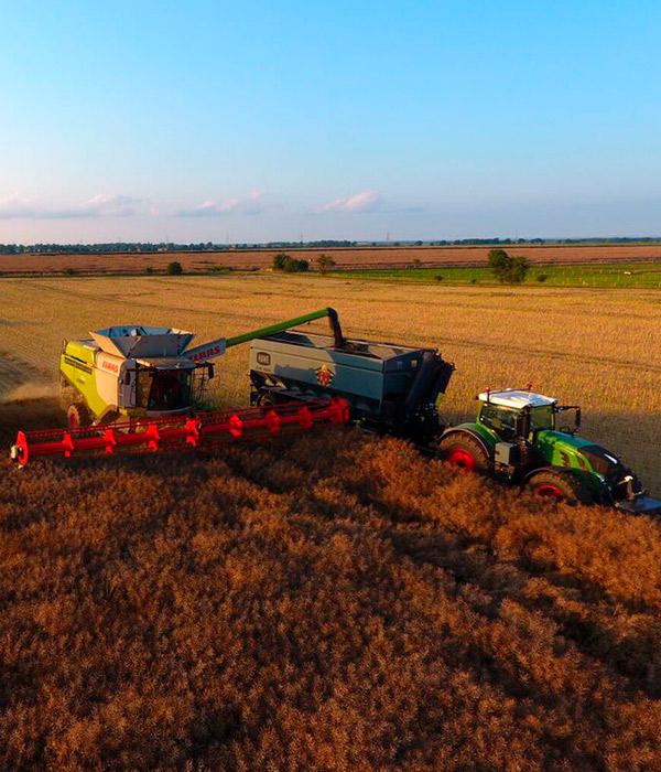 Жатва: аграрии намолотили 39,2 млн тонн зерна