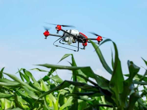 Африканские фермеры стали активно пользоваться дронами