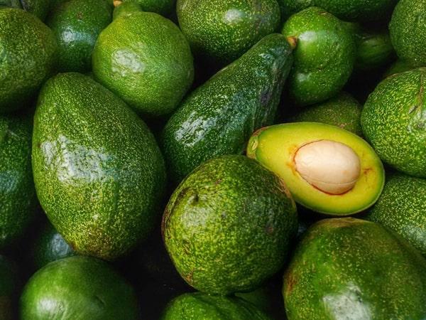 CRISPR авокадо могут противостоять климатическим изменениям