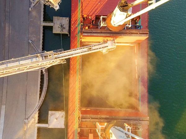 Морские порты нарастили внешние поставки зерновых