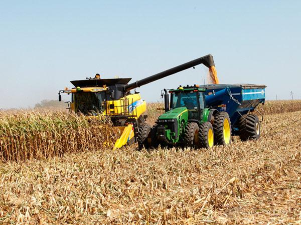 Осенний сбор урожая проходит в штатном режиме