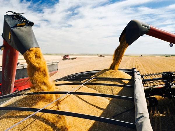 По Днепру стали возить намного больше зерна