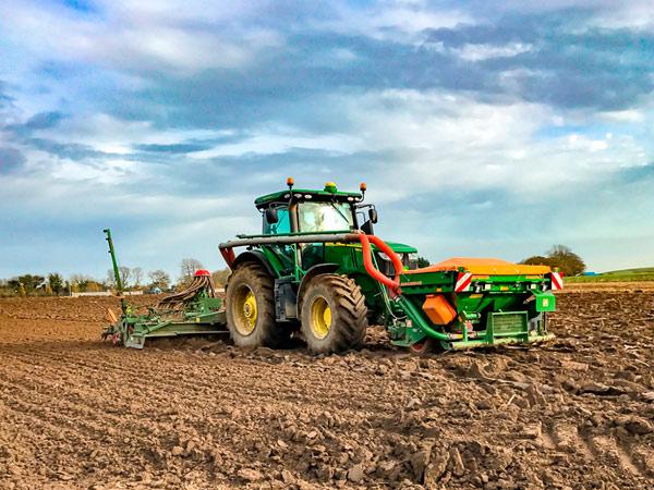 Посевная: озимые зерновые почти полностью засеяны