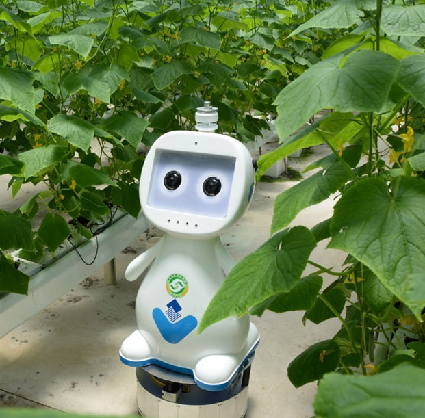 В Китае создали сельскохозяйственного робота с технологией 5G