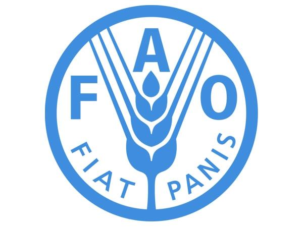 ФАО пророчит общемировое сокращение мясного производства