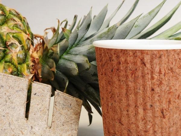На Филиппинах создали бумагу Pinyapel из листьев ананаса (ФОТО)