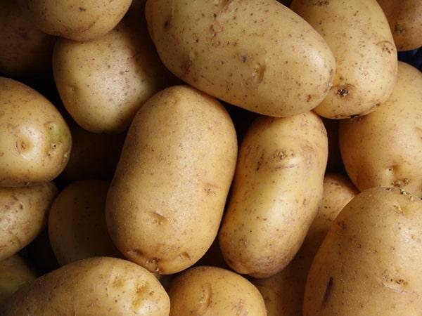 Вьетнамские исследователи создали биоразлагаемый пластик из картофеля