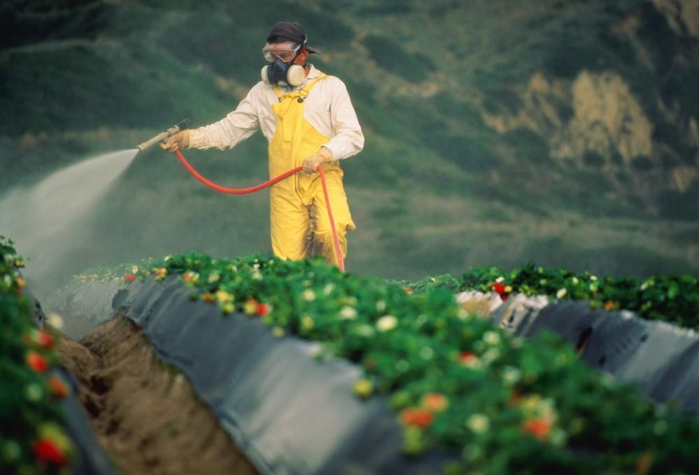 Рынок биопестицидов растет