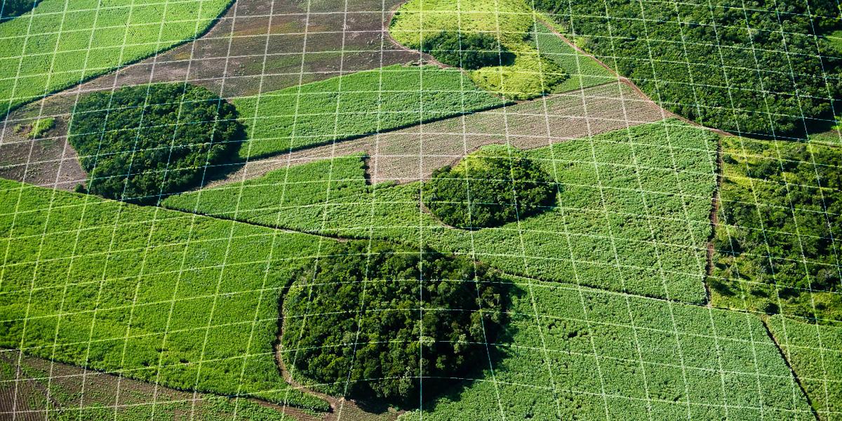 Точное земледелие идет в рост