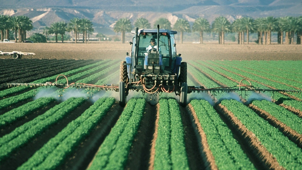 В США и Бразилии все чаще встречается устойчивость сорняков к глифосату
